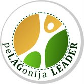 2013-02-25leader logo